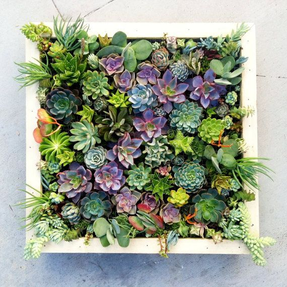 Vertical_succulent_planter